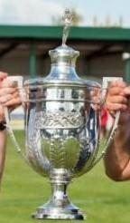 The Worcestershire FA Senior Cup