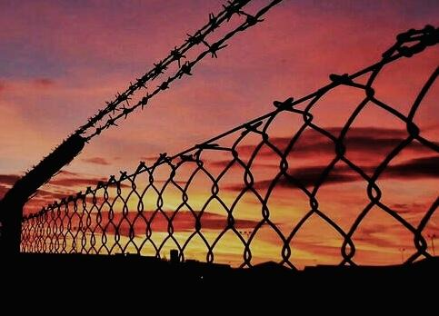Barbed Wire against sunset