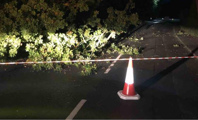 The fallen branch which closed the road earlier today. Picture: Herefordshire Council/Balfour Beatty Living Places