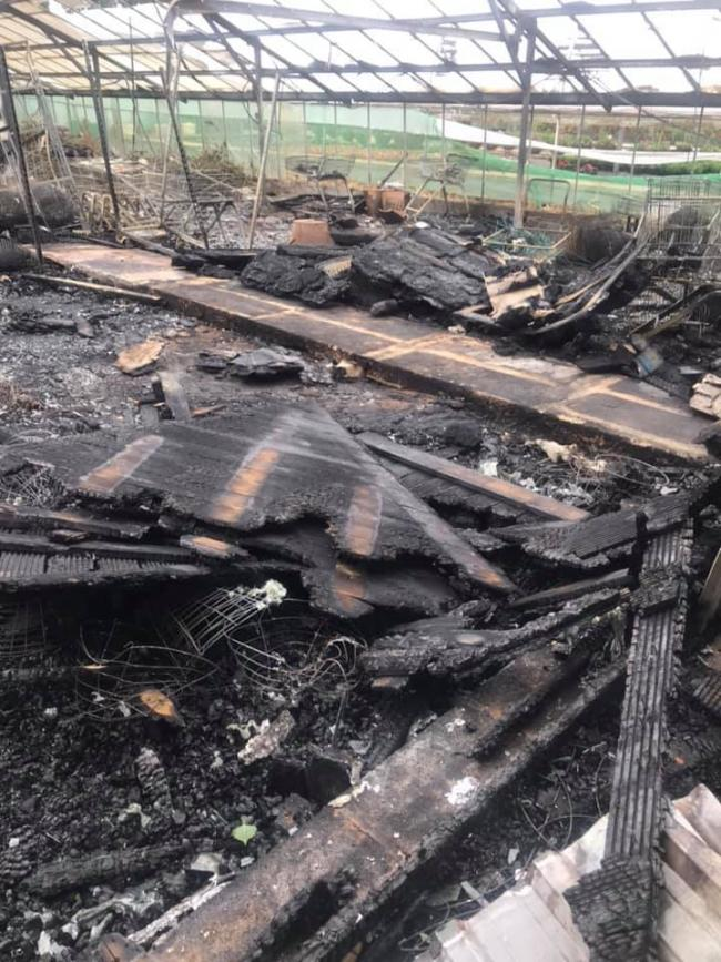 A fire broke out in the check-out area and a glasshouse at Cook's garden nursery in Stourport