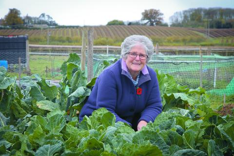 Norah Jordan, of Pembridge, on her allotment