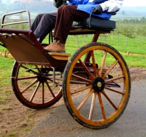 Expensive horse carriage stolen from Herefordshire village
