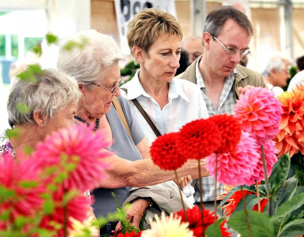 THEY'RE BLOOMING LOVELY: The flower show will be held in the Gheluvelt Riverside Park.