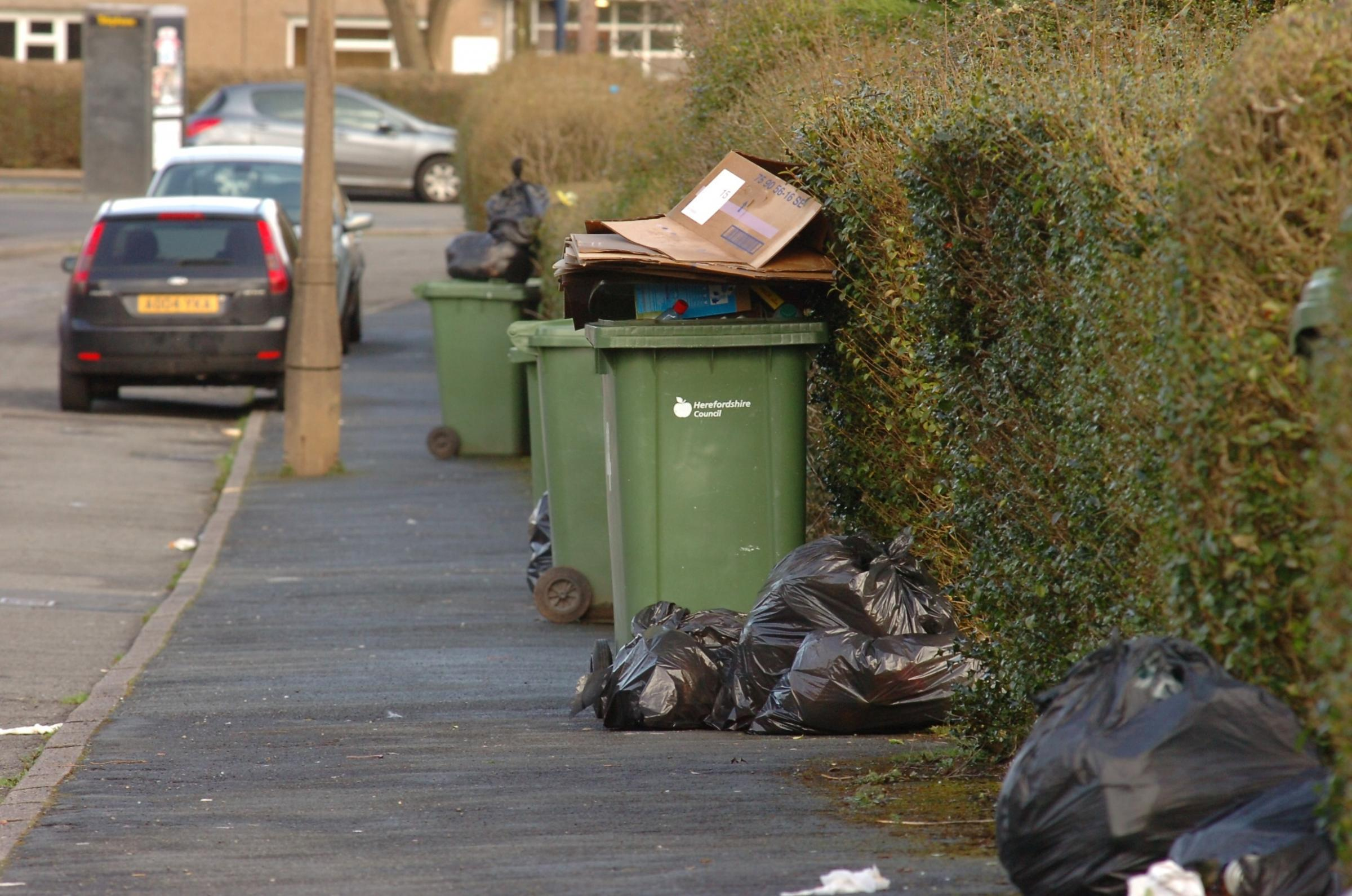 Fortnightly bin collections will be offset by black wheelie bins according to councillor Harry Bramer. This photo shows bins awaiting collection in Newton Farm. Photo by James Maggs. (4379584)